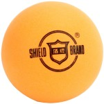 BOLA PING PONG SHIELD